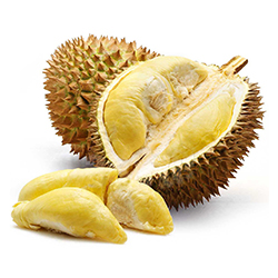 Durian Products